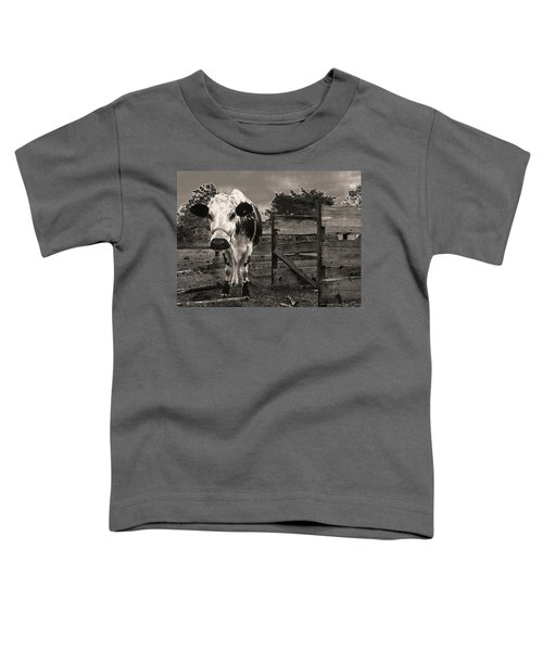 Chocolate Chip At The Stables Toddler T-Shirt