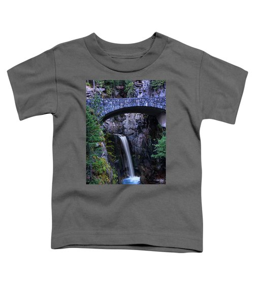 Christine Falls Toddler T-Shirt