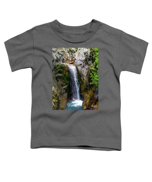 Christine Falls Mt Rainier Toddler T-Shirt