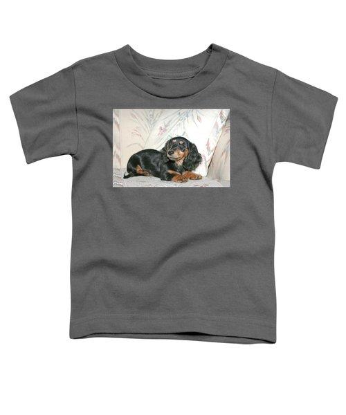 Cinder Toddler T-Shirt