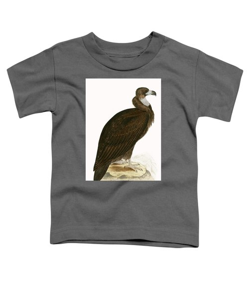Cinereous Vulture Toddler T-Shirt by English School