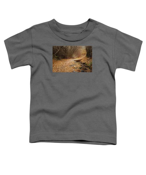 City Creek Toddler T-Shirt