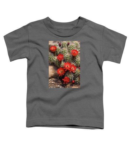 Claret Cup Cactus Toddler T-Shirt