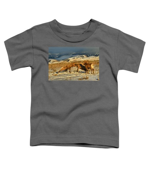 Grand Teton Bighorn Brawlers Toddler T-Shirt