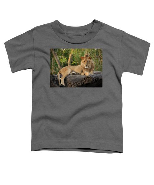 Classic Young Male Toddler T-Shirt