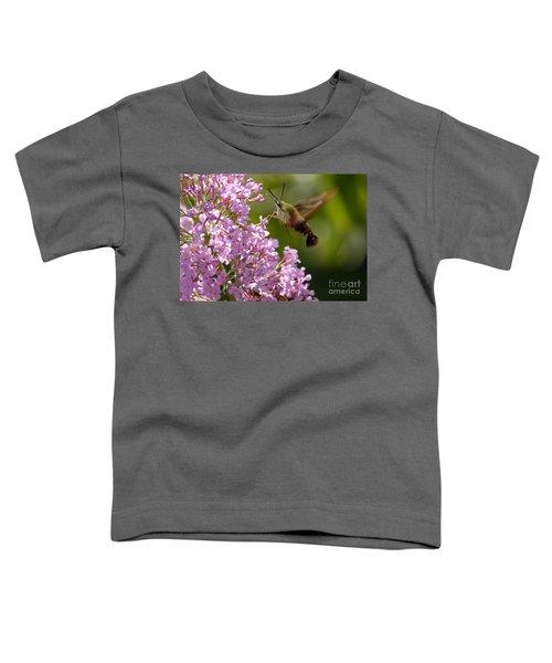 Clearwing Pink Toddler T-Shirt