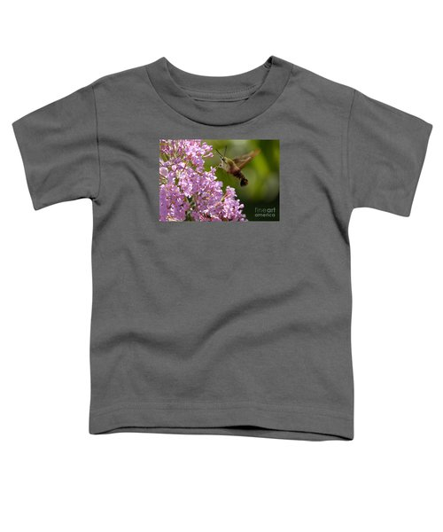 Clearwing Pink Toddler T-Shirt