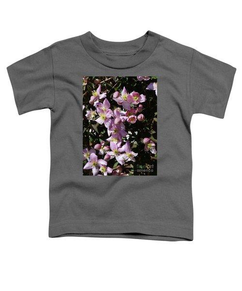 Clematis Montana  In Full Bloom Toddler T-Shirt