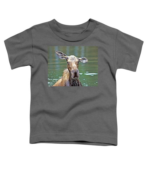Close Wet Moose Toddler T-Shirt