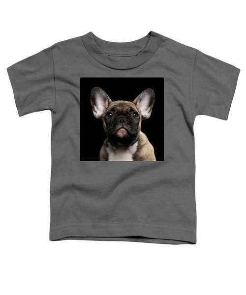 Closeup Portrait French Bulldog Puppy, Cute Looking In Camera Toddler T-Shirt