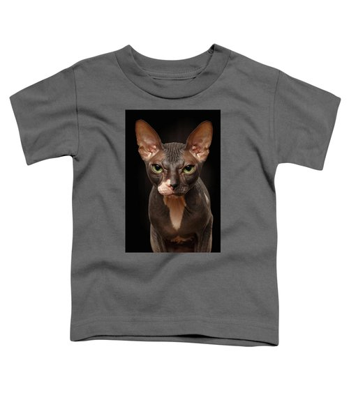 Closeup Portrait Of Grumpy Sphynx Cat Front View On Black  Toddler T-Shirt