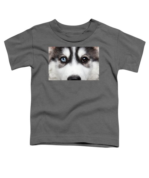 Closeup Siberian Husky Puppy Different Eyes Toddler T-Shirt