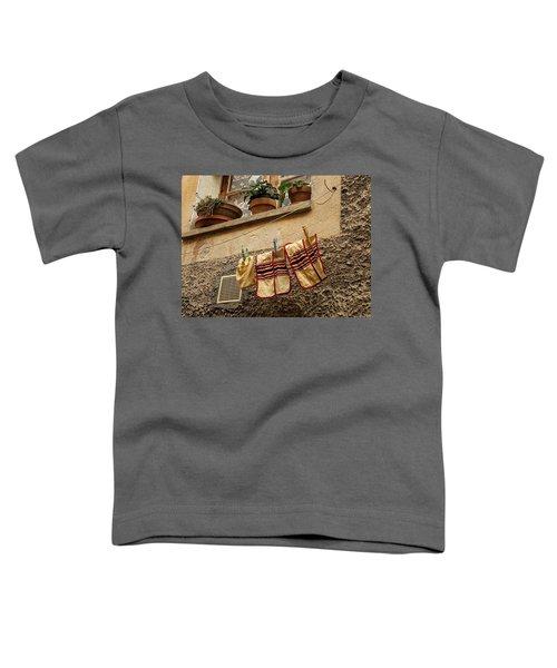 Clothesline In Biot Toddler T-Shirt