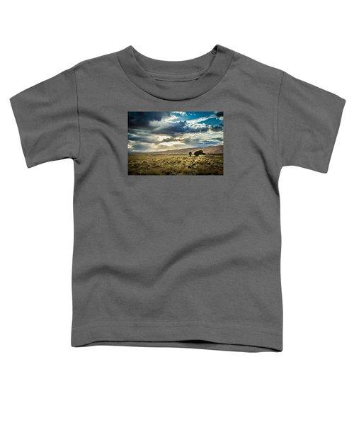 Cloud Break Over Sand Dunes Toddler T-Shirt
