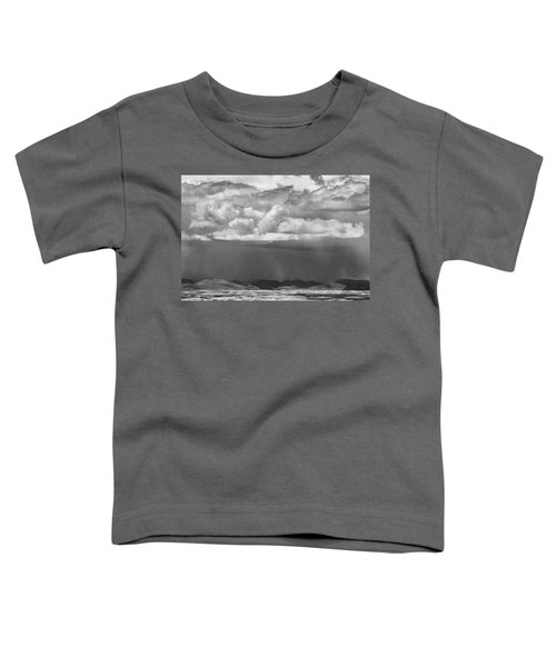 Cloudy Weather Toddler T-Shirt