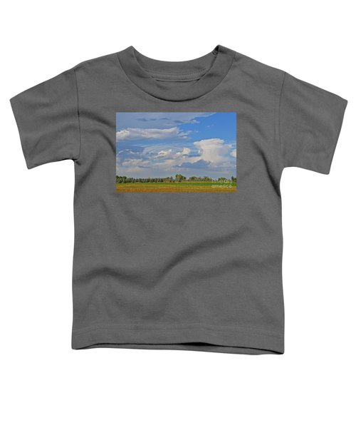 Clouds Aboive The Tree Farm Toddler T-Shirt