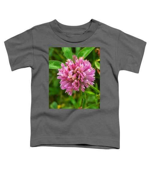 Clover Toddler T-Shirt
