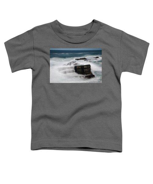 Coastal Dreams 1 Toddler T-Shirt
