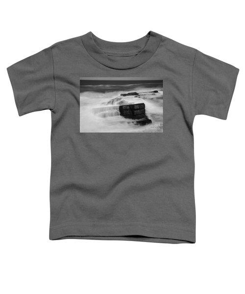 Coastal Dreams  Toddler T-Shirt