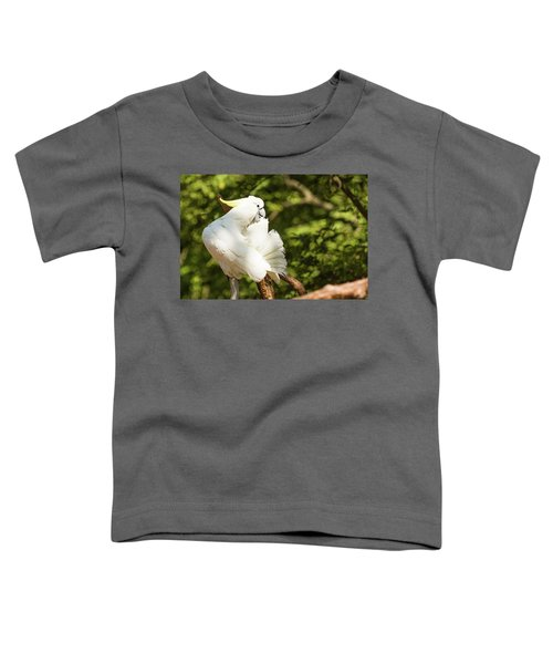 Cockatoo Preaning Toddler T-Shirt