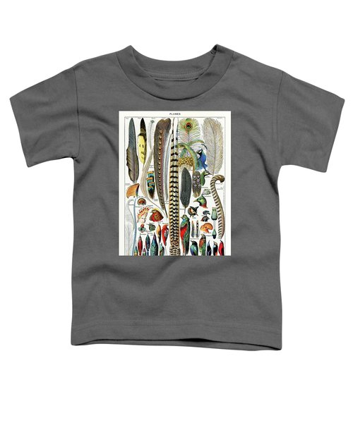 Collection Of Different Plume Types Toddler T-Shirt