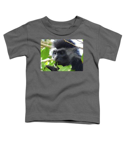 Colobus Monkey Eating Leaves In A Tree Close Up Toddler T-Shirt