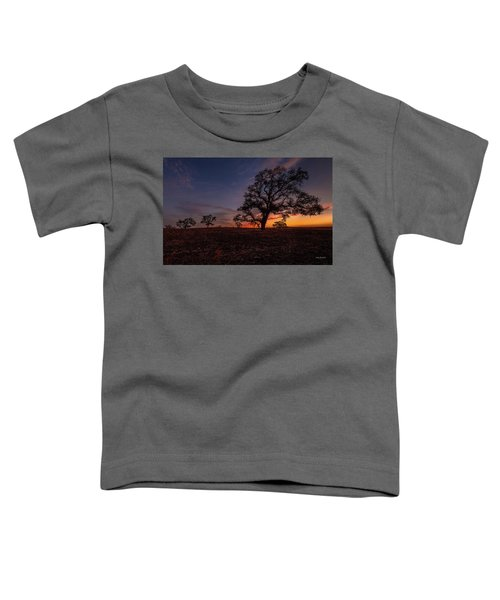 Color Change At First Light Toddler T-Shirt