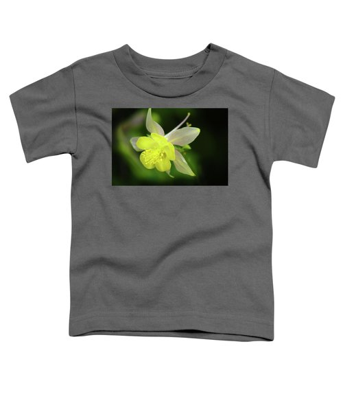Colorado Columbine Toddler T-Shirt
