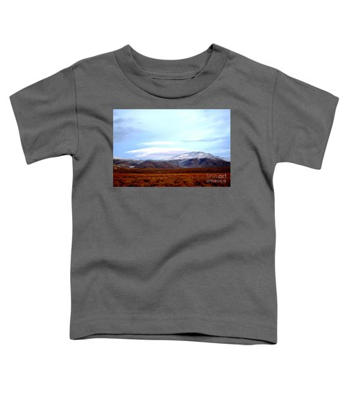 Colorado Mountain Vista Toddler T-Shirt