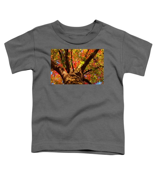 Colorful Autumn Abstract Toddler T-Shirt
