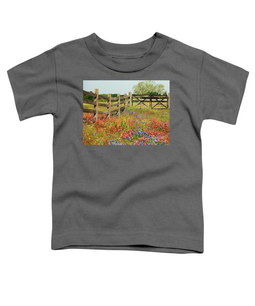 Colorful Gate Toddler T-Shirt