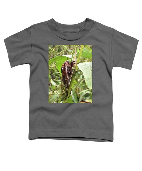 Colorful Summer Cicada Toddler T-Shirt