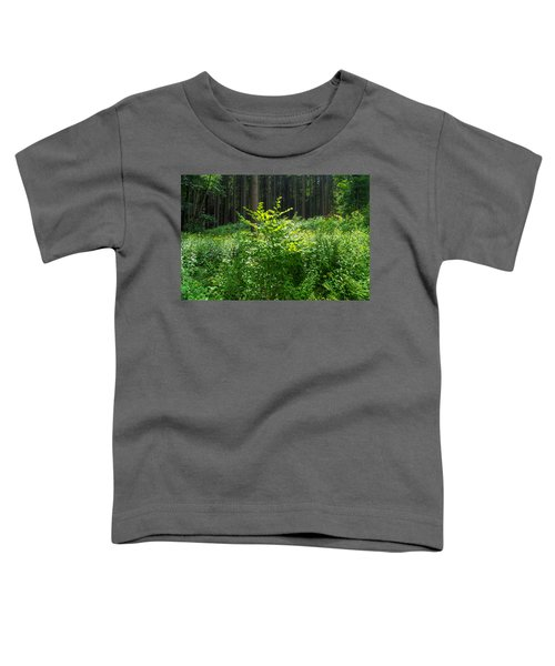 Colors Of A Forest In Vogelsberg Toddler T-Shirt