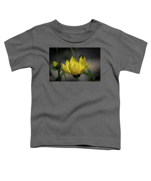 Colour Of Sun Toddler T-Shirt
