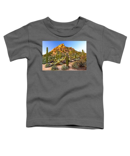 Come Away My Beloved Toddler T-Shirt