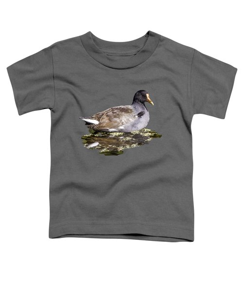 Common Gallinule Transparency Toddler T-Shirt