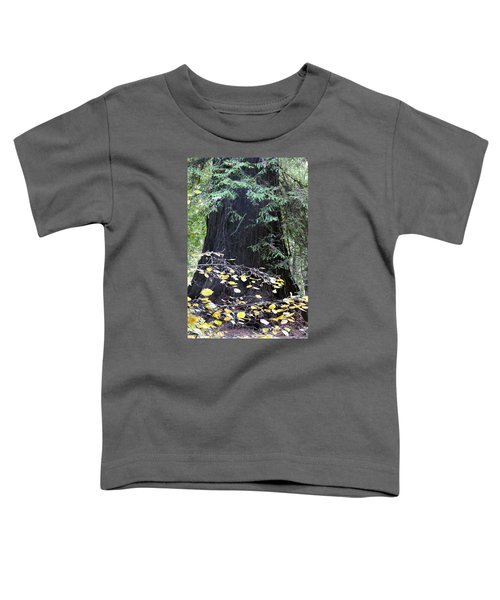 Complementary  Toddler T-Shirt