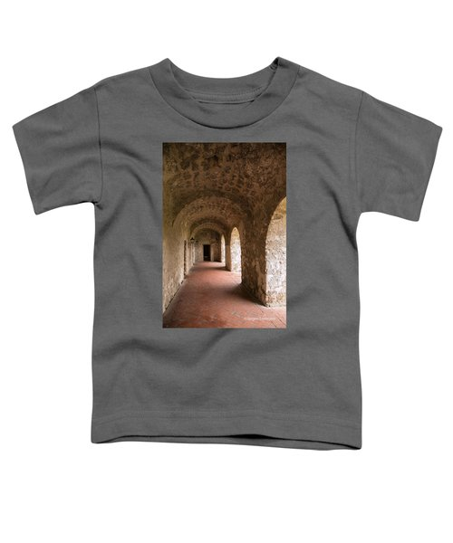 Concepcion Mission Arches Toddler T-Shirt
