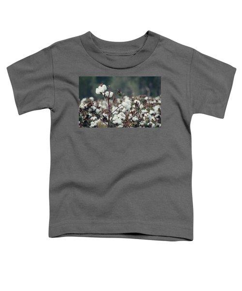 Cotton Field 5 Toddler T-Shirt