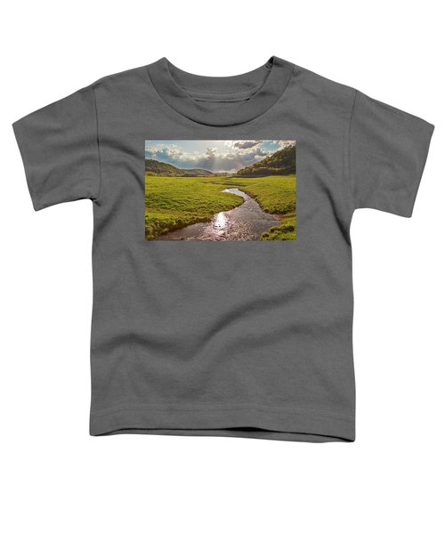 Coulee View Toddler T-Shirt