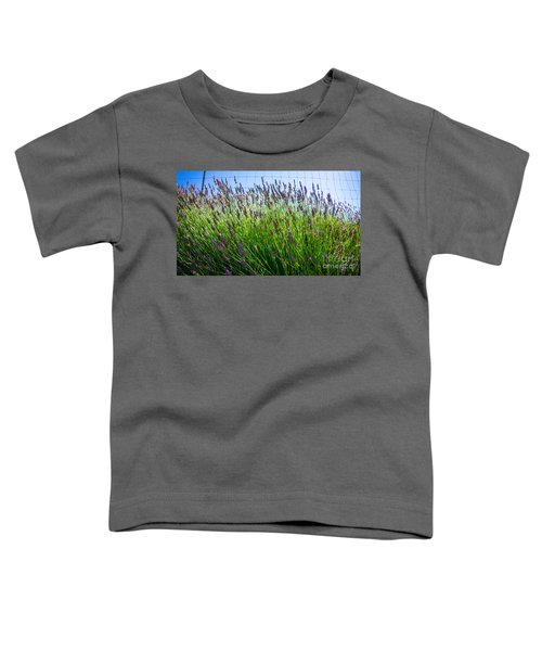 Country Lavender II Toddler T-Shirt