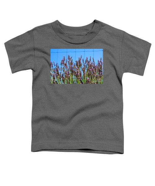 Country Lavender Iv Toddler T-Shirt