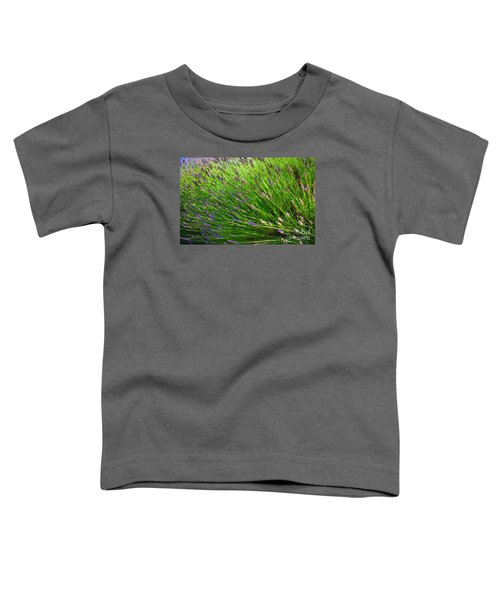 Country Lavender Vi Toddler T-Shirt