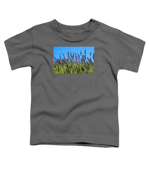 Country Lavender Vii Toddler T-Shirt