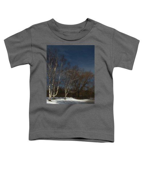 Country Roadside Birch Toddler T-Shirt