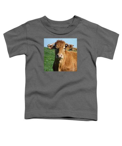 Cow Portrait Toddler T-Shirt