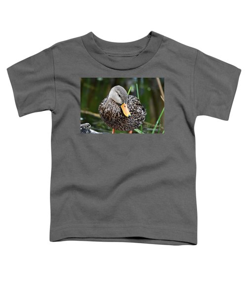 Coy Duck Toddler T-Shirt