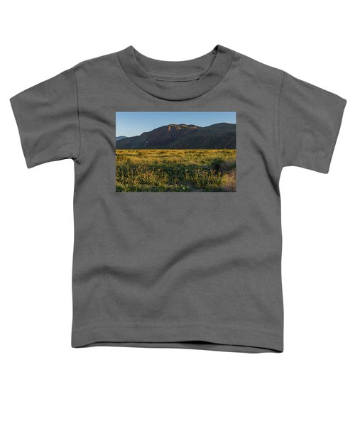 Coyote Mountain And Henderson Canyon Road Toddler T-Shirt