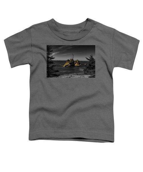 Crab Rock Toddler T-Shirt
