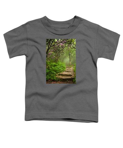 Craggy Steps Toddler T-Shirt